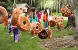 Donut Contest